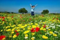 AHMET TURAN - Sonbahar Fotoğrafları Yarışıyor
