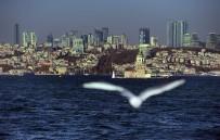 DÜNYA ŞEHİRLERİ - İstanbul Avrupa'nın En Uzun Şehri