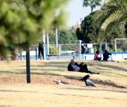 BAHAR HAVASI - Mersin'de Kasım'da Yazdan Kalma Günler Yaşanıyor