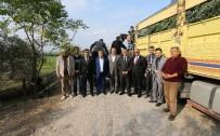 TARIM ÜRÜNÜ - Osmaniye'de 'Zeytinle Yeşeren Umutlar' Projesi