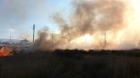SEKILI - Burhaniye'de Yangın