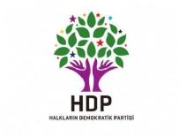 HDP - HDP'liler AYM'ye başvurdu