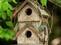 KUŞ YUVASI - Adıyamanlı Öğrencilerden Yurt Çevresindeki Kuşlara Yuva