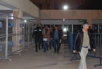 Mardin'den Gözaltına Alınan 20 DBP'li Tutuklandı