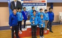 KAĞıTSPOR - Büyükşehirli Satrançcılar, Sakarya'da Yarıştı