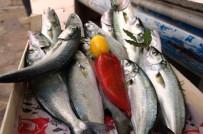 DALYAN - Lapseki'de Balık Fiyatları Ucuzladı