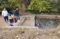 Sulama Havuzunda Ölü Bulundu