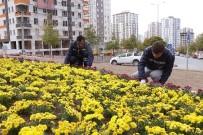 LALE SOĞANI - Talas, Mevsiminin Çiçekleriyle Renklendi