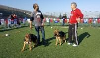 ÇEKMEKÖY BELEDİYESİ - Alman Çoban Köpekleri Türkiye Şampiyonası İçin Yarıştı