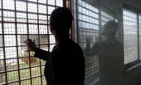 TACIKISTAN - (ÖZEL ) Ceza Değil Eğitim Evi