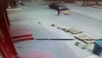 ZİYA GÖKALP - Sürücünün Dikkati Faciayı Önledi