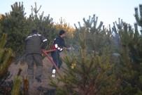 HAYVAN BARINAĞI - Yozgat'ta Çıkan Orman Yangını Büyümeden Söndürüldü