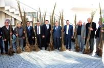 MUSTAFA TEMIZ - Büyükşehir Belediyesi'nden Çiftçilere 12 Bin Ceviz Fidanı