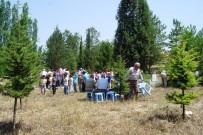 CAİZ - Mezarlıkta İskat Parası Dağıtılıyor