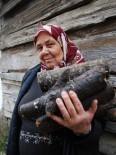 KARAKAMıŞ - Orman Köylüsüne Yakacak Odunun Tonu 2 Lira