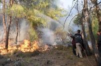 ORMAN İŞÇİSİ - Tarsus'ta Orman Yangını