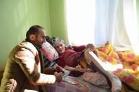 YABANİ HAYVANLAR - 115 Yaşındaki Balli Nine'nin Yol Hayali