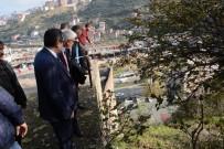 AFET BÖLGESİ - Trabzon'da Yamaçtan Kaya Düşen Mahallede Önlemler Alınıyor