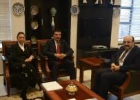 YÜKSEK ÖĞRETIM KURUMU - Bakan Tüfenkci, YÖK Başkanı Saraç'la Görüştü