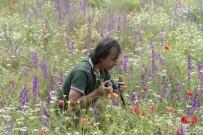 ESKIŞEHIR OSMANGAZI ÜNIVERSITESI - Frig Vadileri Çiçek Açıyor