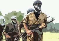 CUDI DAĞı - PKK'nın sözde bölge sorumlusu öldürüldü!