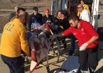 İTFAİYE ARACI - Samsun'da İtfaiye Aracı Devrildi Açıklaması 3 Yaralı
