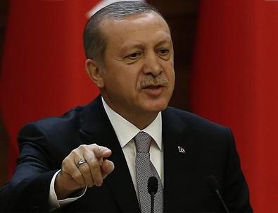 Erdoğan: Darbecileri kırmızı halıda karşıladılar