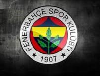 DICK ADVOCAAT - Fenerbahçe Kasım'da kaybetmedi