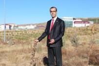 KÖMÜR SOBASI - Prof. Dr. Karadağ, Çiftçinin Dona Karşı Alacağı Tedbirleri Anlattı