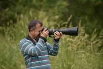İNCİ KEFALİ - Van Gölünde İlk Defa Ak Pelikan Fotoğraflandı