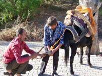 AMANOS DAĞLARI - Nalbantlık Mesleğinin Son Temsilcileri Unutulmak İstemiyor