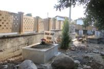 EMEKLİ ÖĞRETMEN - Ölen Kedisini Mezarlığa Gömüp, Mezar Taşı Yaptırdı