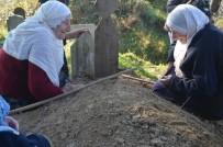 SEMPATIK - Üçüz Nineler İkiz Kaldı