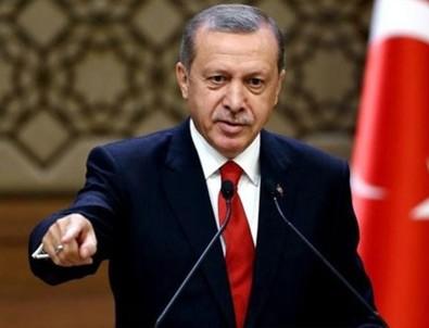 Alman uzmandan Erdoğan açıklaması
