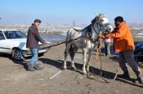 SIBIRYA - Atıyla Donan Aracını Çekti