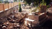EMEKLİ ÖĞRETMEN - Kedi 'Arap'ın' Mezarı Tahrip Edildi
