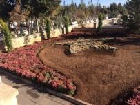 AY YıLDıZ - Şehit Mezarlarının Bakımları Yapıldı