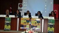 AVRUPA KONSEYİ - Aydınlı Kadınlar 'İstanbul Sözleşmesi' Panelinde Bir Araya Geldi