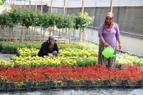 İĞDE - Döşemealtı Belediyesi Kendi Bitki Ve Çiçeğini Üretiyor