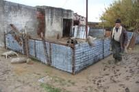 BALIKÇI TEKNESİ - Ayvalık'taki Selde 800 Hayvan Telef Oldu