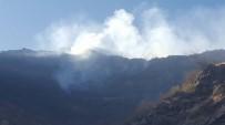 ORMAN YANGINI - Beytüşşebap'ta Orman Yangını