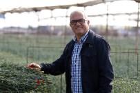 ETIYOPYA - Süs Bitkileri Üreticisi Arazi Ve Teşvik Desteği Bekliyor