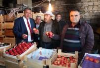 TARIM BAKANLIĞI - Niğdeli Elma Üreticileri Destek İstiyor