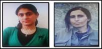 PARA ÖDÜLÜ - Siirt'te Aranan Terör Şüphelilerinden Biri Yakalandı