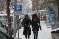 HAVA SICAKLIĞI - Ardahan'da Kar Yağışı