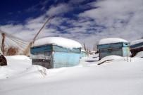 Evliyaoğlu Açıklaması 'Kar Altında Kışlatma, Arının Ömrünü Uzatıyor'