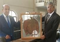 HAKAN KUBALı - Kaymakam Kubalı, Tütün Müzesi'ni İnceledi