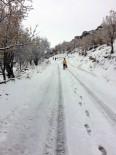 ALİ ŞAHİN - Sağlık Ekipleri Karlı Havada Hastaya Ulaşmak İşçin 5 Kilometre Yürüdü