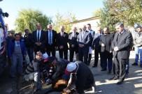 MEHMET BUYRUK - Erzincan Belediyesi Araç Filosunu Genişletiyor