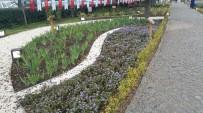 KUŞBURNU - Kocaeli'de Tıbbi Ve Aromatik Bitkiler Bahçesi Açıldı